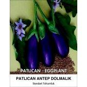 Patlıcan Tohumu Antep Dolmalık 25 G (Takribi 3.250 Tohum)