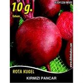 Kırmızı Pancar Tohumu 10 G. (Takribi 550 Tohum)