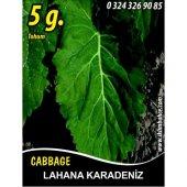 Lahana Tohumu Karadere (Yaprak) 5g (Takribi 1000 Tohum)