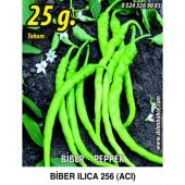 Biber Tohumu Ilıca 256 Acı Sivri 25 G. (Takribi 2000 Tohum)