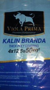 Viola Prima Kalın Zemin Örtüsü 50 M2