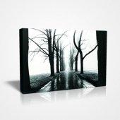 45x30 Cm Ağaçlı Yol Canvas Tablo