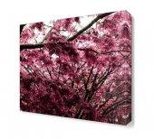Pembe Ağaç Yaprakları Tablosu