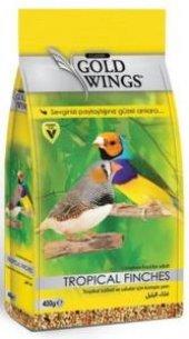 Gold Wings Classic Tropikal Finch Yemi 400 Gr