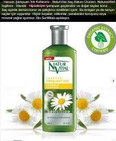 Natur Vital Organik Şampuan Papatya Tüm Saçlar
