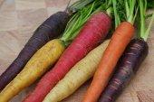 5 Adet Rainbow Gül Tohumu HEDİYE - Hollandadan İTHAL Gökkuşağı(Rainbow) Havuç Tohumu - 25 Tohum-2