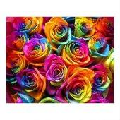 5 Adet Rainbow Gül Tohumu HEDİYE - Hollandadan İTHAL Gökkuşağı(Rainbow) Havuç Tohumu - 25 Tohum-8