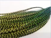 Saç Tüyü Turkuaz Fosforlu Yeşil Hareli
