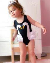 siyah kuğu - black swan-2