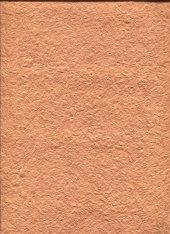 Silkcoat İpek & Canlı & Yalıtım & Dekoratif Sıva Yprestige315