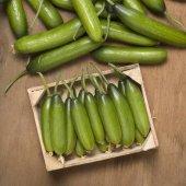 Mutlu Sebzeler Badem Hıyarı (Silor) (1kg)