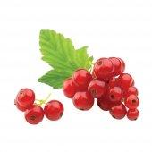 Mutlu Sebzeler Frenk Üzümü Red Berry 125grlık 1...