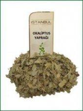 Istanbul Baharat Okaliptus Yaprağı 50 Gr