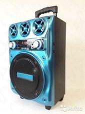 Bk 1000 Taşınabilir Karakoke Speaker