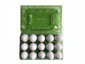 15 Lİ Plastik Yeşil Yumurta Viyolu (200 Adet)-3