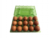 15 Lİ Plastik Yeşil Yumurta Viyolu (200 Adet)-4