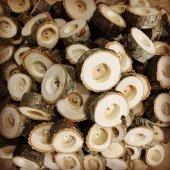 Kütük Mumluk Doğal Meşe Ağacı 1 Set 5 Adet