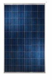 280 Watt Polikristal Güneş Paneli Mexxsun