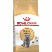 Yetişkin British Shorthair Kedi Maması Royal Canin Kedi Mama 2kg