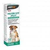 Vetiq Nutri Vit Plus Köpek Vitamini Macun 100 Gr