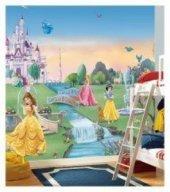 Prensesler Duvar Kağıdı (Duvar Resmi)