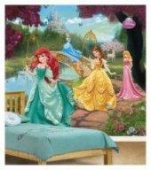 Prenses Kül Kedisi Ve Arkadaşları Duvar Kağıdı (Duvar Resmi)