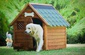 Mandu Isı Yalıtımlı Ahşap Köpek Kulübesi (Xl) (İsimlik+mama Kabı Hediye)