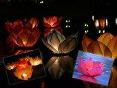 Nilüfer (Çiçek) Su Feneri-2