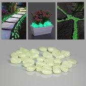 Fosforlu Çakıl Taşları (25 Adet)