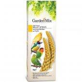 Gardenmix Platin Sarı Dal Darı 150 Gram