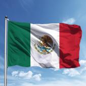 Meksika Bayrağı 50*75
