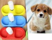 FinePet Kedi ve Köpek İçin Otomatik Su ve Mama Kabı-4