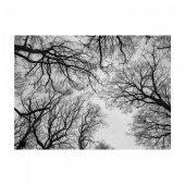 Branches 178x126 cm Duvar Resmi-2