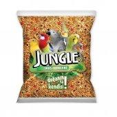 Jungle Ekonomik Poşet Muhabbet 500 Gr