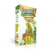 Jungle Ballı Muhabbet Kuşu Krakeri 10 Lu