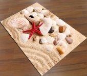 Sh 0159 Kumsal Deniz Kabukları 3d Antialerjik Dekoratif Halı