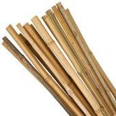 Bambu Cubuk 210 Cm 16 18 Mm 50 Adet Bambu Bitki...