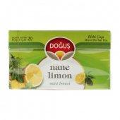 Doğuş Çay Nane Limon 20li