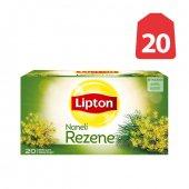 Lipton Çay Rezene 20li