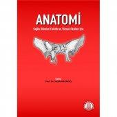 Anatomi Sağlık Bilimleri Fakülte Ve Yüksek...