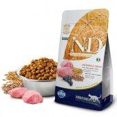 N&D Düşük Tahıllı Kuzu/Yaban Mersini Yetişkin Kedi Maması 1,5 Kg