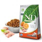 N&D Tahılsız Balık/Portakal Orta Irk Yetişkin Köpek Maması 2,5 Kg