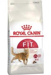 Royal Canin Fit32 Tavuklu Yetişkin Kedi Maması Açık 1kg