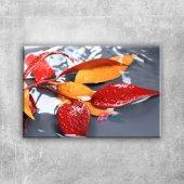 Sonbahar Yaprakları, Canlı Hd Renkler Fotoğraf Kanvas Tablo