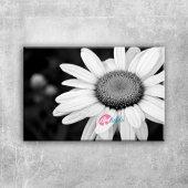 Papatya 2 Siyah Beyaz Floral Sanat Kanvas Tablo Ar...