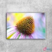 çiçek Goncası Doğa Manzaraları Kanvas Tablo Art Ta...
