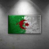 Cezayir Bayrak Dekoratif Canvas Tablo