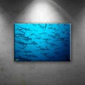 çekiç Balıkları Sürüsü Hayvanlar Dekoratif Kanvas ...