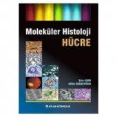 Moleküler Histoloji Hücre