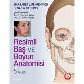 Resimli Baş Ve Boyun Anatomisi